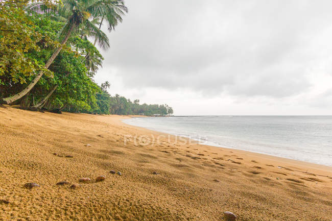 Africa, Praia Inhame Eco Lodge Beach - The beach of Sao Tome and Principe, with palms on sandy shore by sea — Stock Photo