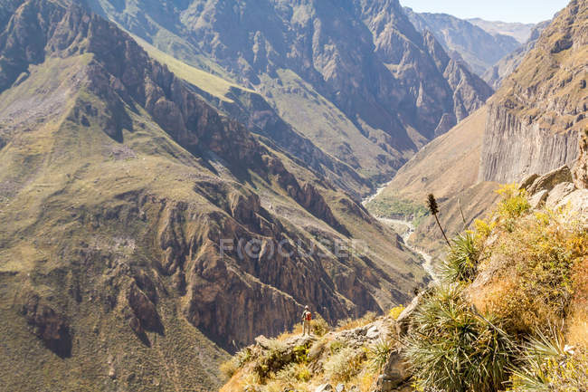 Peru, arequipa, blick auf die wanderung hinunter ins tal des colca-canyons — Stockfoto