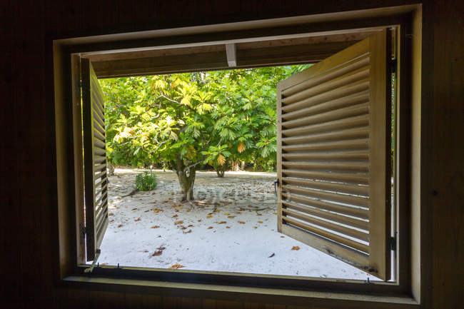 Seychelles, vista desde la habitación al exterior - foto de stock