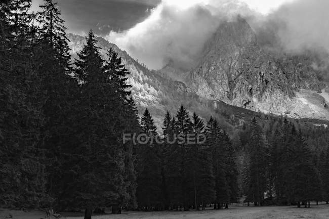 Vista de Austria, Carintia, Ferlach, Bodental, montaña y bosque - foto de stock