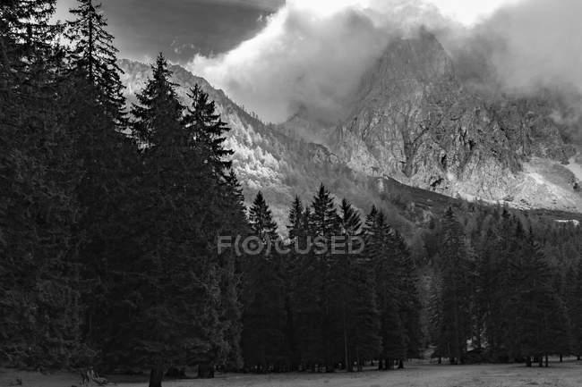Österreich, Kärnten, Ferlach, Bodental, Berge und Wald anzeigen — Stockfoto