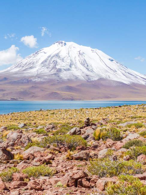Chile, Regi?n de Antofagasta, El Loa, Laguna Miniques, panorama with snowy summit — Fotografia de Stock