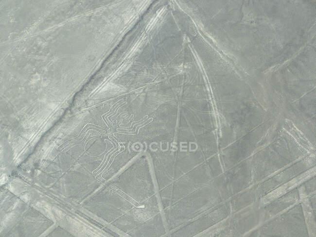 Пустынные линии и паукообразный геоглиф в местечке Наска-Прованс, Ика, Перу — стоковое фото