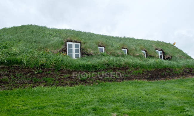 Authentic peat house with lush green grass, iceland — Stock Photo
