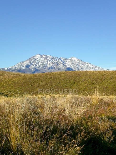 New Zealand, Manawatu-Wanganui, Tongariro National Park, Tongariro Alpine Crossing, mountain view over steppe — Stock Photo
