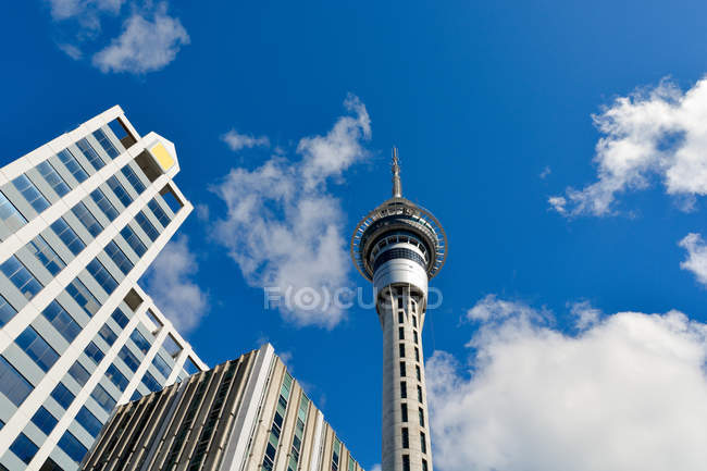 New Zealand, Auckland, Auckland Skytower at noon — Stock Photo