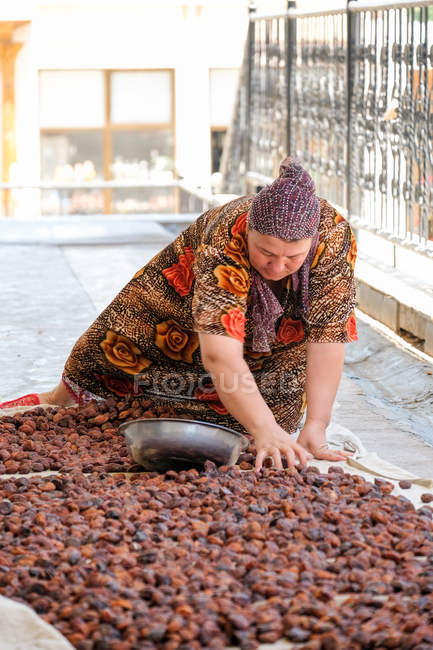 Mujer adulta despliegue de frutas para el secado, Uzbekistán - foto de stock