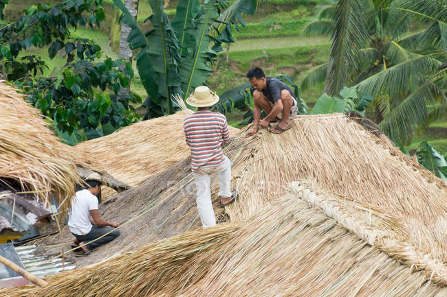 Les populations locales construisent un toit de chaume, Bali, Indonésie — Photo de stock