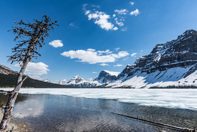 Канада, Альберта, Национальный парк Банф, кристально чистые горные озера — стоковое фото