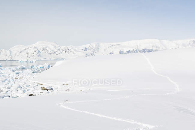 Antarctica, footprints in the snow and scenic frozen landscape in bright sunshine — Stock Photo