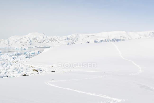 Антарктида, следы в снегу и живописные замороженных ландшафтов в ярком солнце — стоковое фото