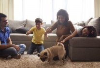 Family playing with pug — Stock Photo