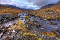 Água do Rio Klondike rochoso no Prado de Tombstone Park, Yukon, Canadá — Fotografia de Stock