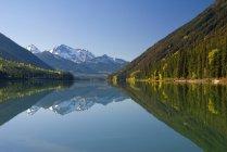Отражение Даффи озеро горы и леса, Даффи озеро Провинциальный парк, Британская Колумбия, Канада. — стоковое фото