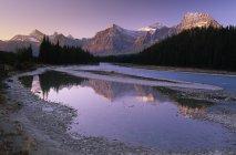 Канадські Скелясті гори, що відображають в Athanbasca річка в Національний парк Джаспер, Альберта, Канада. — стокове фото