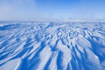 Nieve viento desplaza en pradera congeladora del sur de Saskatchewan, Canadá - foto de stock