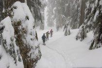 Des gens font de la raquette dans les montagnes du parc provincial Mount Seymour, Vancouver, Colombie-Britannique, Canada — Photo de stock