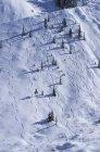 Vista aérea de pistas de esquí en pista nevada en Rogers Pass, Glacier National Park, Columbia Británica, Canadá - foto de stock