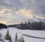 Mount Fryatt and Athabasca River in Jasper National Park, Alberta, Canada. — Stock Photo