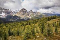 Picos de Faraón y bosque en la zona del lago de Egipto del parque nacional Banff, Alberta, Canadá. - foto de stock