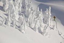 Snowboarder montaña hombre desollado a montaña Revelstoke Mountain Resort, Revelstoke, Canadá - foto de stock