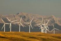 Molinos de viento generando energía en Prado de Pincher Creek, Alberta, Canadá. - foto de stock