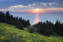 Cape George Point in Nova Scotia at sunset, Canada. — Stock Photo