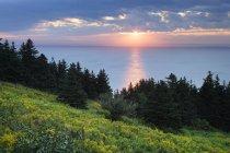 Cape Point Джордж в Новій Шотландії, на заході сонця, Канада — стокове фото