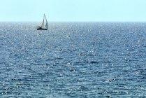Парусник на сверкающем Джорджианском заливе, полуостров Брюс, Онтарио, Канада — стоковое фото
