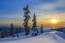 Зимний закат в Маунт Сеймур Провинциальный парк, Британская Колумбия, Канада — стоковое фото