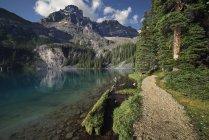 Via al Ohara del lago con Mount Lefroy nel Parco nazionale di Yoho, Colombia britannica, Canada — Foto stock
