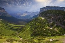 Valle verde di Logan Pass a Parco nazionale Glacier, Montana, Usa. — Foto stock