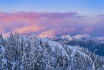 Cloudscape в сутінки взимку, Провінційний парк Маунт Сеймур, Британська Колумбія, Канада — стокове фото
