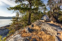 Sunset light on tent on West Curme Island in Desolation Sound Marine Park, British Columbia, Canada. — Stock Photo