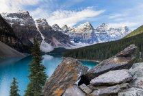 Скалистые берега и бирюзовые воды озера Морейн в горах национального парка Банф, Канада . — стоковое фото