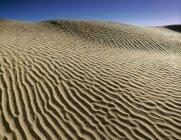 Natural rippled pattern of sand dunes in Great Sandhills near Sceptre, Saskatchewan, Canada. — Stock Photo