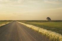 Camino y casa rural cerca de Leader, Saskatchewan, Canadá - foto de stock