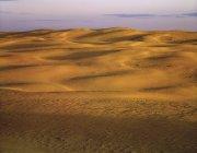 Prateria di sabbia a Great Sandhills vicino a Sceptre, Saskatchewan, Canada . — Foto stock