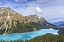 Горный ландшафт с бирюзовой водой озера Пейто, Национальный парк Банф, Альберта, Канада — стоковое фото