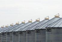 Fila di granai metallici vicino a Calgary, Alberta, Canada — Foto stock