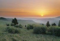 Схід сонця над лугом дикобраза пагорби, Альберта, Канада. — стокове фото