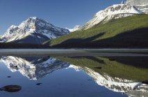 Водоплавних птахів верхнього озера, що відображають засніжені гори Паттерсон, Banff Національний парк, Альберта, Канада — стокове фото