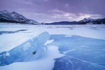 Abraham lago ghiacciato in inverno, Kootenay Plains, Bighorn delle terre incolte, Alberta, Canada — Foto stock