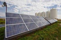 Solar panels on farm in Alberta, Canada. — Stock Photo