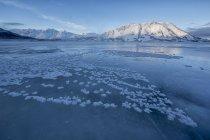 Cristales de hielo en la superficie congelada del lago Kluane con montaña de las ovejas en el Parque Nacional de Kluane, Yukon, Canadá. - foto de stock