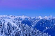 Dawn dans un paysage enneigé du Parc Provincial du Mont Seymour, Colombie-Britannique, Canada — Photo de stock