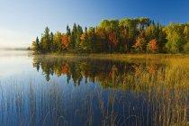 Herbststimmung am Bunny Lake in der Nähe von Sioux, Nordwest-Ontario, Kanada — Stockfoto