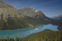 Glacial del lago Peyto en las montañas del Parque Nacional de Banff en el atardecer, Alberta, Canadá - foto de stock