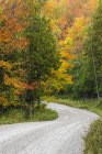 Strada valle inferiore attraverso la foresta d'autunno a Beaver Valley, Ontario, Canada — Foto stock