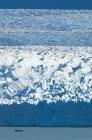 Bateau d'excursion sur l'eau du lac Argentine devant le mur massif du glacier Perito Moreno, Patagonie, Argentine — Photo de stock